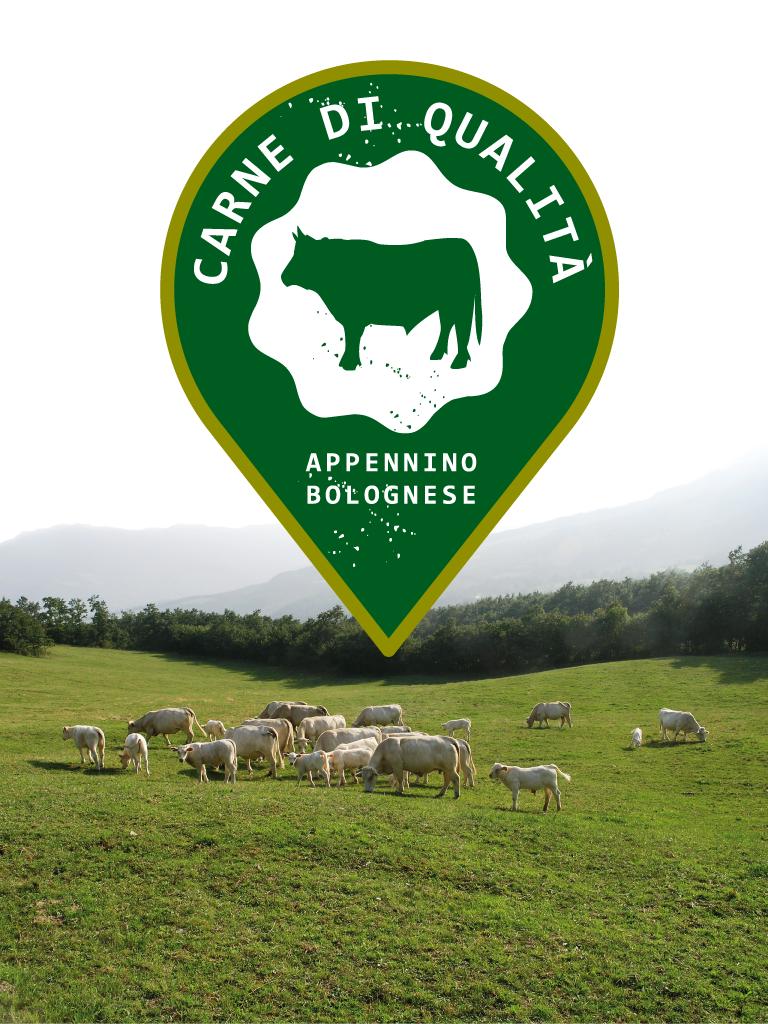 appennino-carni-logo